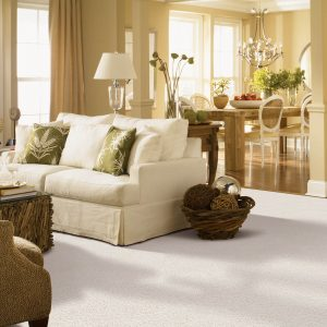 White Carpet in Living Room | Christian Brothers Flooring & Interiors.