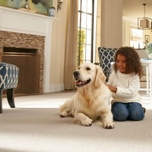 Pet Friendly Carpet | Christian Brothers Flooring & Interiors.