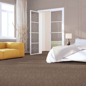 Impressive selection of Carpet | Christian Brothers Flooring & Interiors.