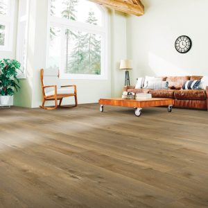 Laminate Floor of Living Room | Christian Brothers Flooring & Interiors.