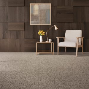 Stylish Carpet | Christian Brothers Flooring & Interiors.