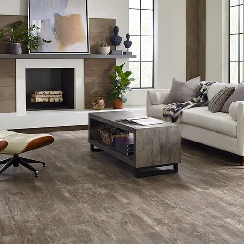 Paramount plus at living room | Christian Brothers Flooring & Interiors.