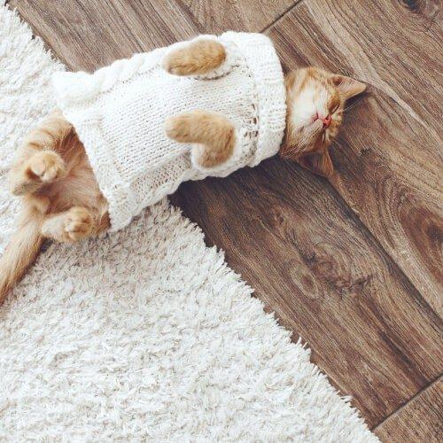 Pet Friendly Hardwood Floor | Christian Brothers Flooring & Interiors.